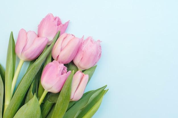 Zarte rosa tulpen auf einem blau