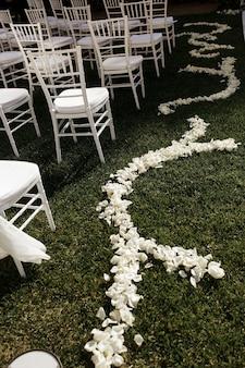 Zarte weiße blumenblätter liegen auf dem grünen gras entlang weißen stühlen