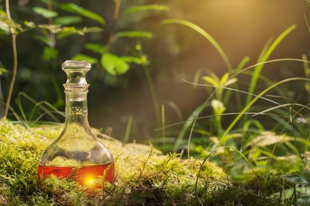 Zaubertrank in der flasche im wald