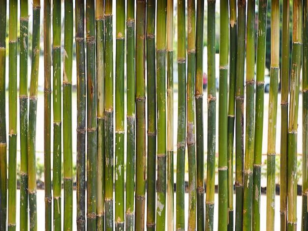 Zaun aus bambus