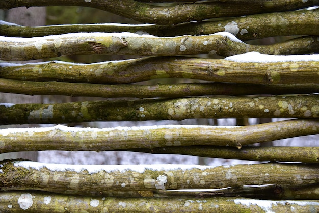 Zaun von den alten hölzernen zweigen im winter