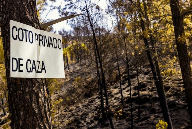 Zeichen des privaten jagdreviers in spanien, fest im stamm einer kiefer, die durch ein feuer gebrannt wird