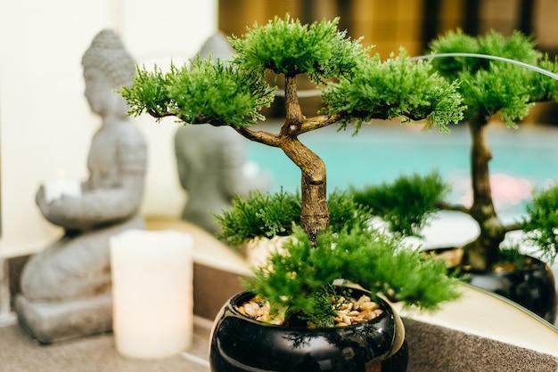 Zen-konzept