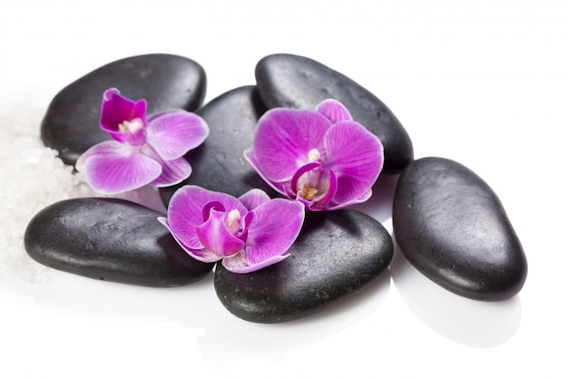 Zen stein und orchidee.