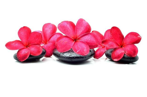 Zen-steine mit frangipani-blüte