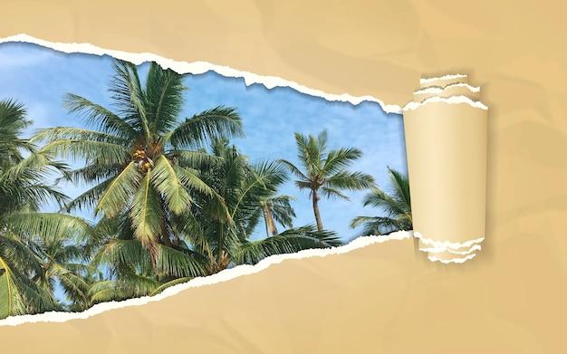 Zerrissenes papier mit palmen vor blauem himmel im sich öffnenden hintergrund