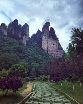 Zhangjiajie park in china