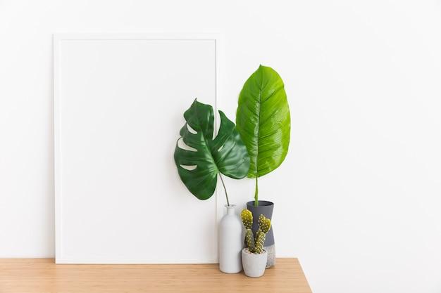 Zierpflanze mit leerem rahmen