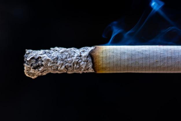 Zigarettendetail-makrorauch in der zigarre