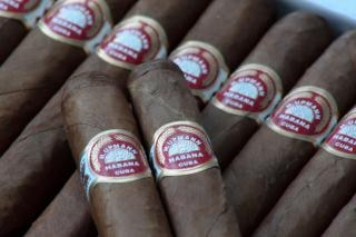 Zigarren-, nikotin-