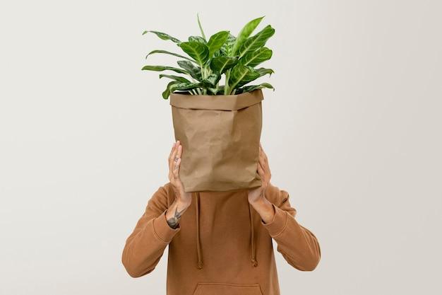 Zimmerpflanze im lieferservice für nachhaltige verpackungspflanzen