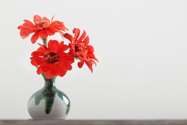 Zinnienblume in einer vase