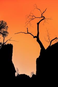 Zion canyon sonnenuntergang