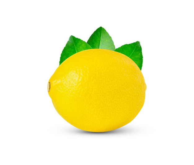 Zitrone lokalisiert auf weißem hintergrund