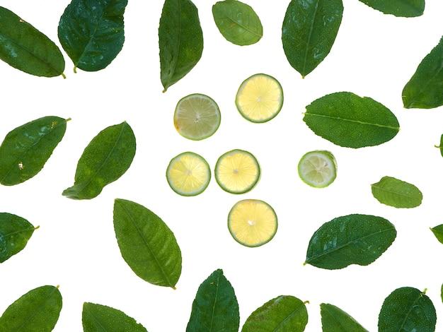 Zitrone und blätter getrennt auf weiß