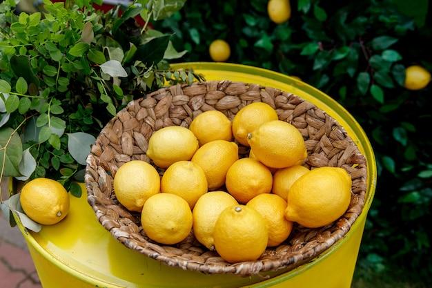 Zitronen in einem korb Premium Fotos