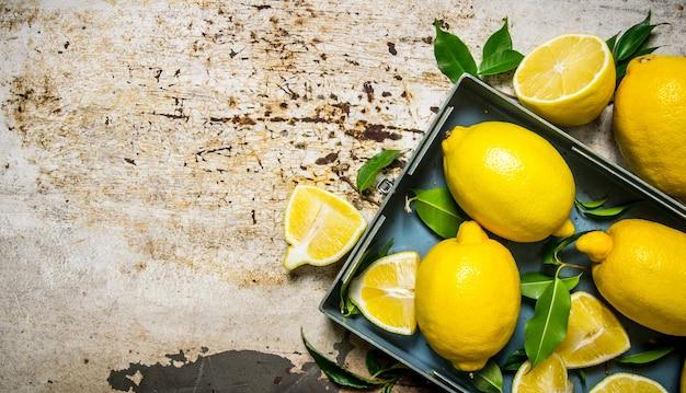 Zitronen in einer metallbox mit blättern. auf rustikalem hintergrund. freier platz für text. draufsicht