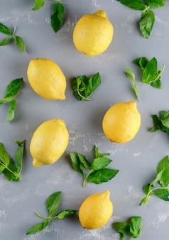 Zitronen mit minzblättern lagen flach auf einer gipsoberfläche
