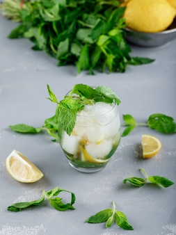 Zitronen und minze in einer schüssel mit eisigem entgiftungswasser