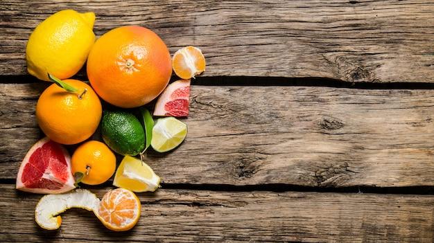 Zitrusfrüchte - grapefruit, orange, mandarine, zitrone, limette.