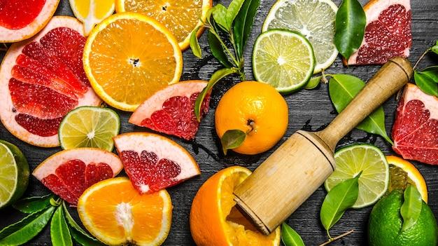 Zitrusfrüchte - grapefruit, orange, mandarine, zitrone, limette