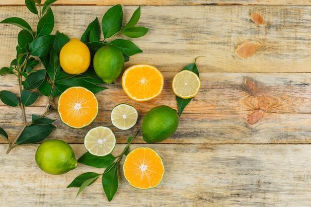 Zitrusfrüchte mit blättern