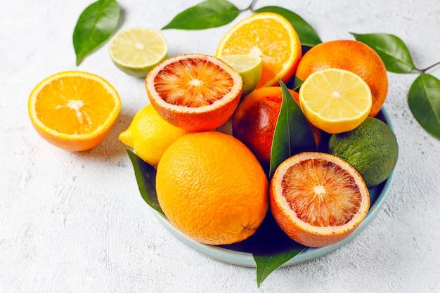 Zitrusfrüchte mit verschiedenen frischen zitrusfrüchten, zitrone, orange, limette, blutorange, frisch und farbenfroh, draufsicht