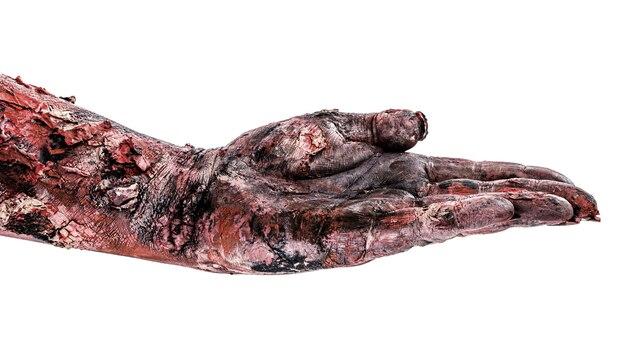 Zombie oder untote hand, in geste des wartens, empfangens oder anbietens von etwas, isolierter weißer hintergrund.