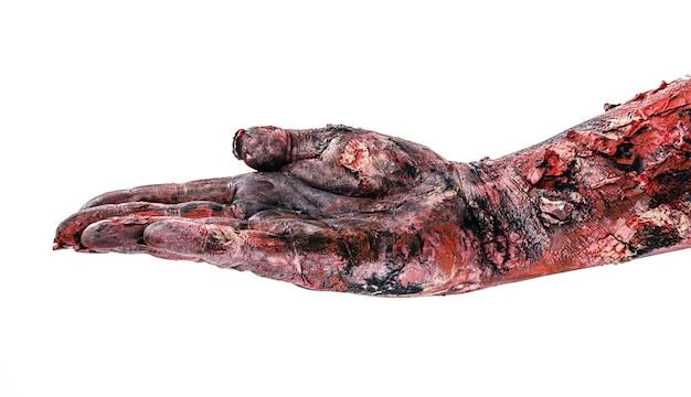 Zombiehand, im wartemanagement, etwas empfangend, isolierte weiße oberfläche.