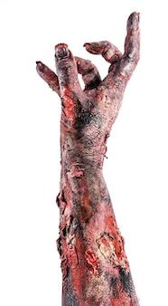 Zombiehand, untote, die aus dem boden kommt, monsterhand auf isolierter weißer oberfläche, halloween-hand.
