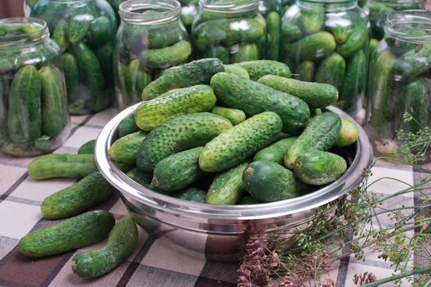 Zubereitung von gurken für einmachgurken zu hause.