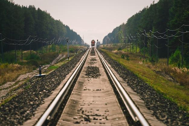 Zug fährt mit der bahn den wald entlang