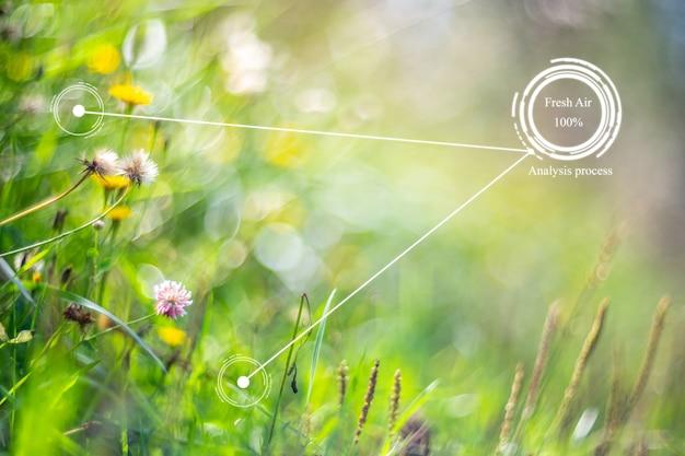 Zukünftige innovation für ein intelligentes ökologiesystem. automatische messung, analyse von luftreinheit und frische. umwelttechnisches konzept zur vermeidung von umweltverschmutzung. frischer schöner naturhintergrund