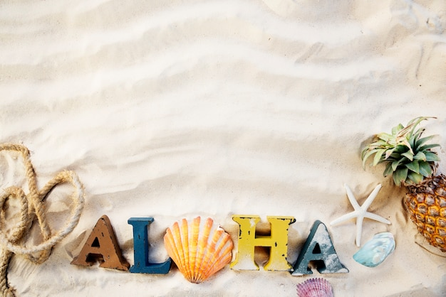 Zum strand-sommerferien-ferien-starfish-konzept gegangen