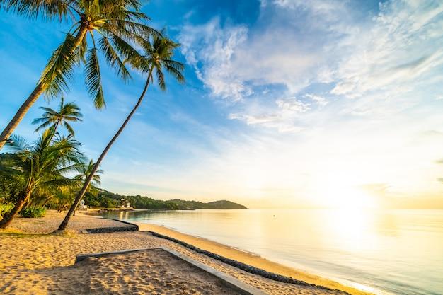 Zur sonnenuntergangzeit auf dem tropischen strand und dem meer mit kokosnusspalme