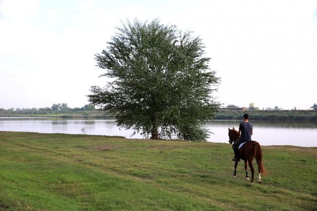 Zurück vom mann, der pferd in richtung zum baum nahe dem see fährt