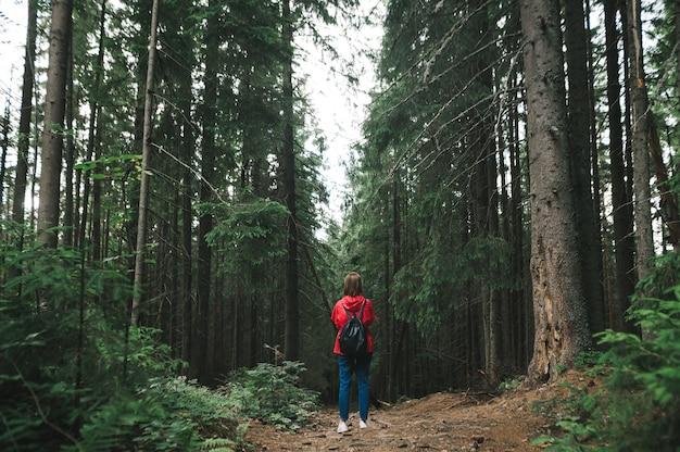Zurück von wanderermädchen in freizeitkleidung klettert berge in waldwegen