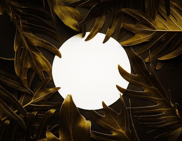 Zusammenfassung des exotischen farnblattes in der goldfarbe und im weißen kopienraumhintergrund. naturkonzepte entwerfen.