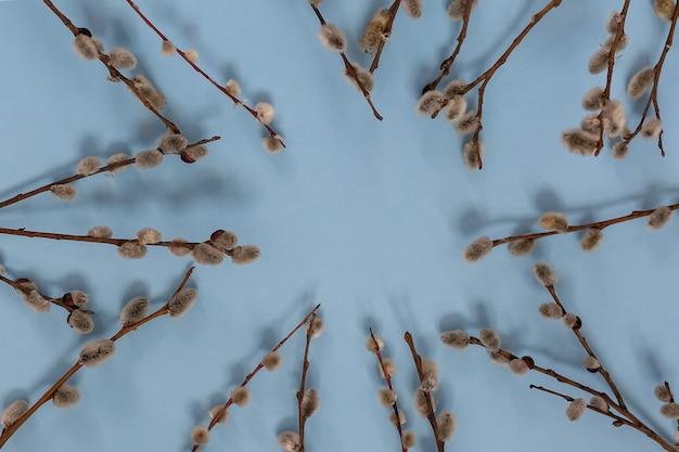 Zusammensetzung der weidenzweige mit blumen und knospen auf einem blauen hintergrund.