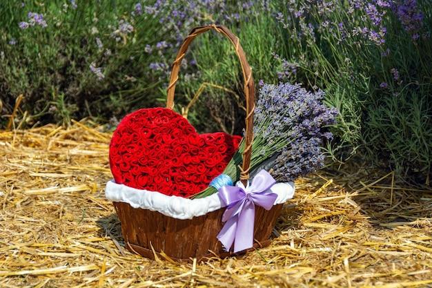 Zusammensetzung mit lavendel und roten herzen in einem korb über lavendelfeld