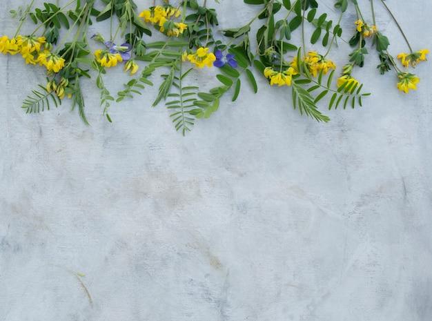 Zusammensetzung von sommerblumen auf einem grauen hintergrund.