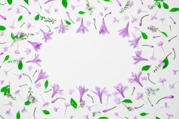 Zusammensetzung von wundervollen purpurroten blumen und von grünem laub