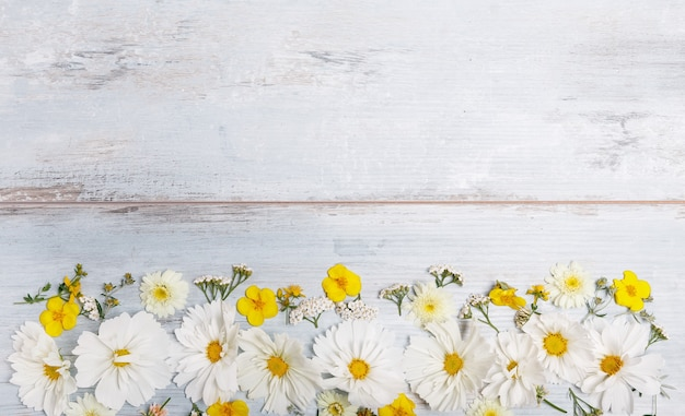 Zusammensetzung weißer kosmea, kosmos auf blauen brettern. gelbe blumen auf handgemachtem holztischhintergrund. hintergrund mit kopienraum, flache lage, draufsicht. mutter, valentinstag, frauen, hochzeitstag-konzept.