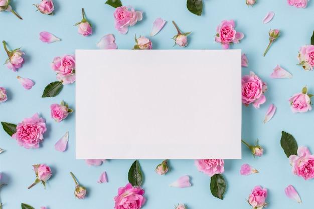 Zusammenstellung des rosa rosenkonzeptes