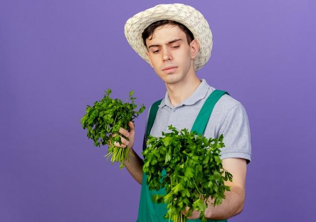 Zuversichtlich junger männlicher gärtner, der gartenhut trägt, hält und schaut auf koriander