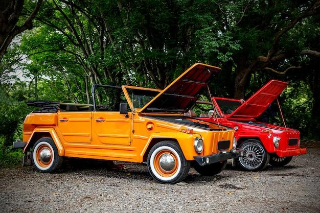 Zwei alte cabrios mit offener motorhaube im dschungel.