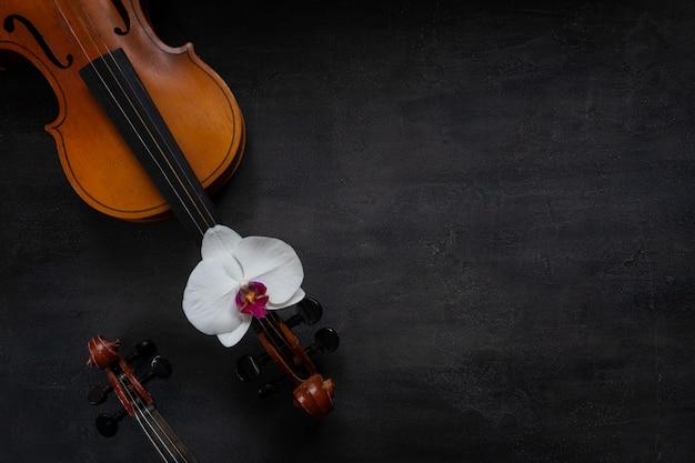 Zwei alte violinen und weiße orchideenblume. draufsicht, nahaufnahme auf dunklem konkretem hintergrund