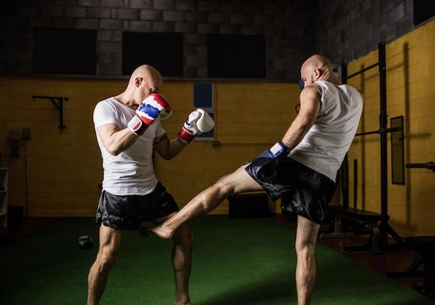 Zwei boxer üben boxen im fitnessstudio