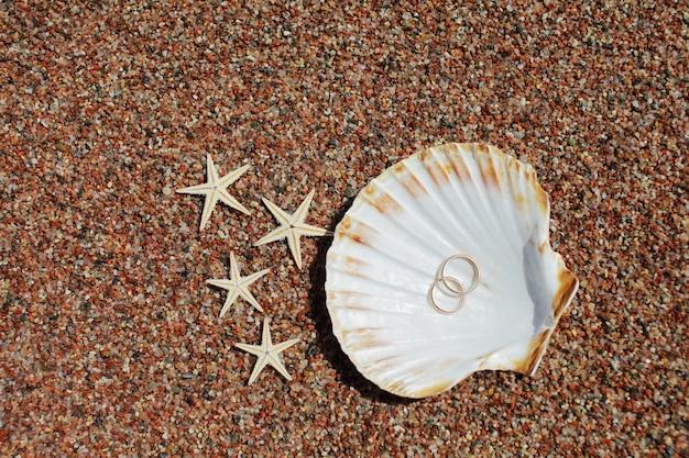 Zwei eheringe in einer muschel, die im sand neben dem seestern liegen
