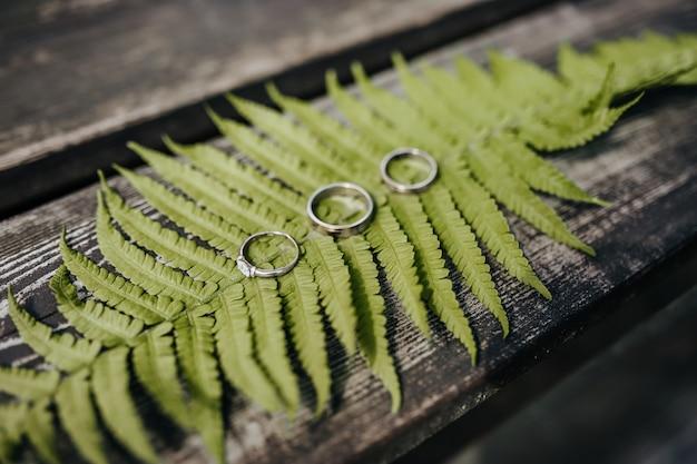 Zwei eheringe und ein verlobungsring liegen auf einer farnpflanze auf einem holztisch